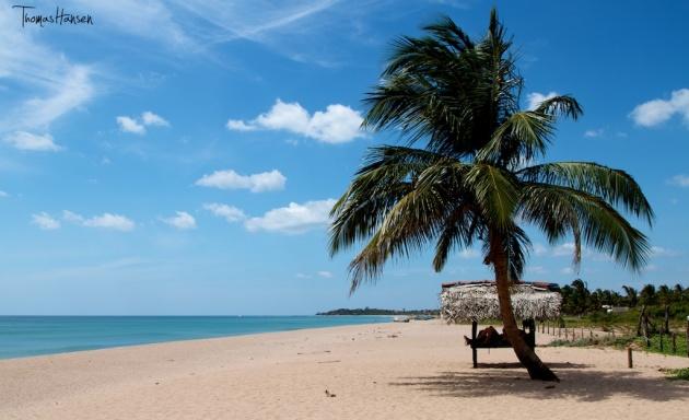 Nilaveli Beach - Trincamalee - Sri Lanka 2
