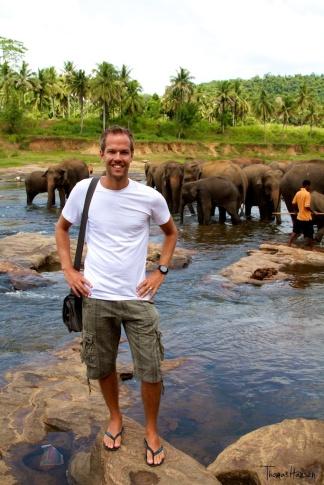 Pinnawala Elephant Orphanage - Sri Lanka 7