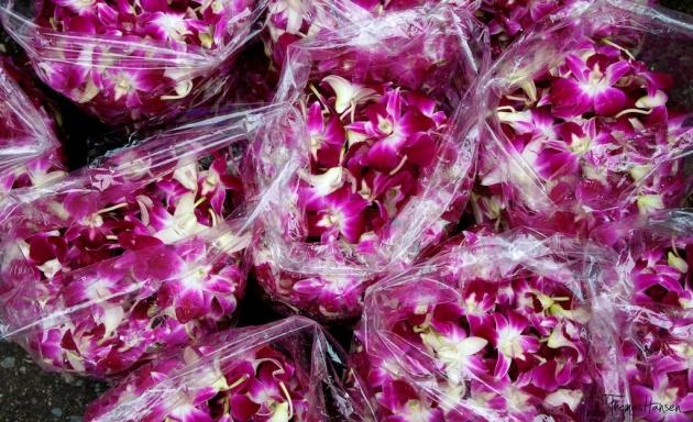 Bangkok Flower Market 3- Thailand
