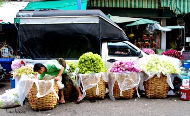 Bangkok Flower Market 5- Thailand