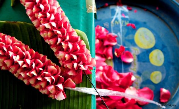 Bangkok Flower Market 9- Thailand