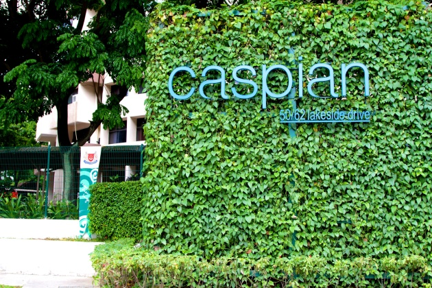 Caspian Condo - Singapore 01
