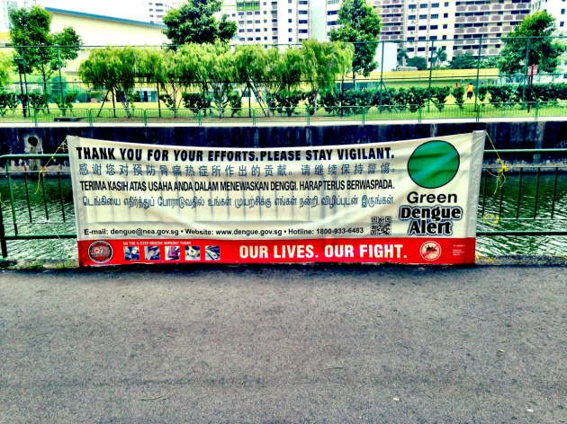 Dengue in Singapore 2014