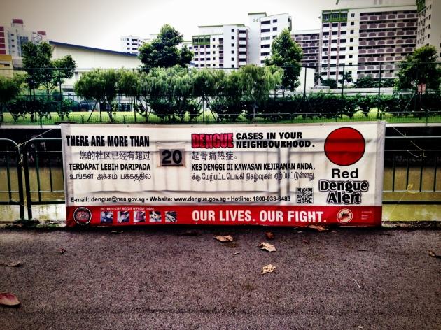 Dengue Singapore 2014