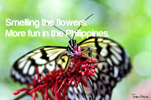 Smelling The Flowers - More Fun In The Philippines