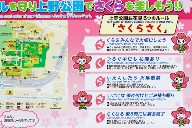 Japanese Cherry Blossom Viewing Rules