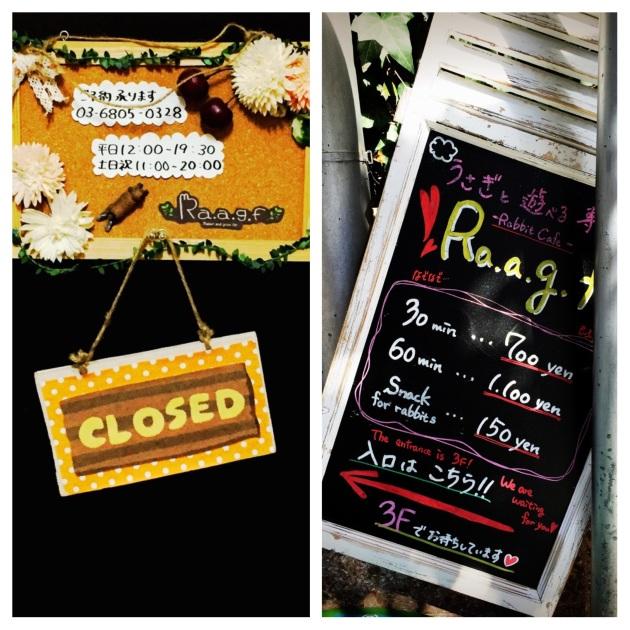 Ra.a.g.f - Rabbit Pet Cafe - Tokyo - Japan 07