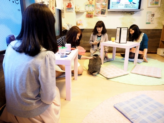 rabbit-pet-cafe-tokyo-japan-ra-a-g-f-03.jpg